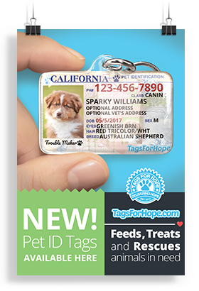 A poster advertising Pet ID Tags