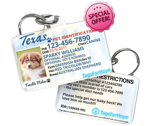 Personalized Pet Id Tags For Dogs