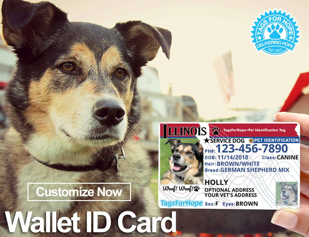 graphic regarding My Dog is Home Alone Card Printable named TagsForHope® Tailored Puppy Identification Tags for Pet dogs Cats