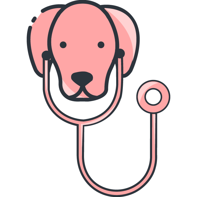 A dog with a stethoscope