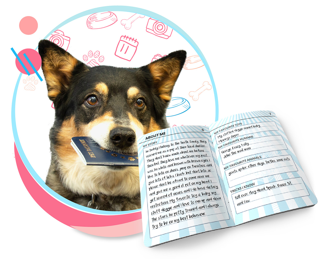 A dog with their pet passport in their mouth. A pet passport is hovering in front, opened the the About Me section. This section features the pet's story, favourite toys, people, animals, and tricks they know.