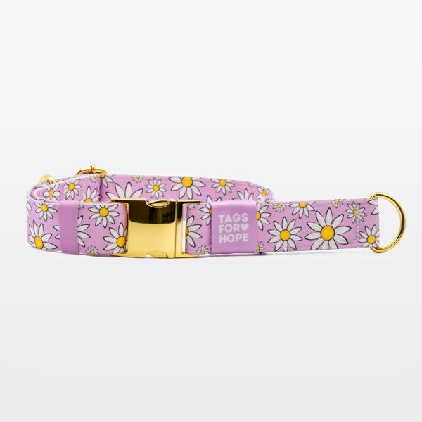purple-daisies-martingale-xl